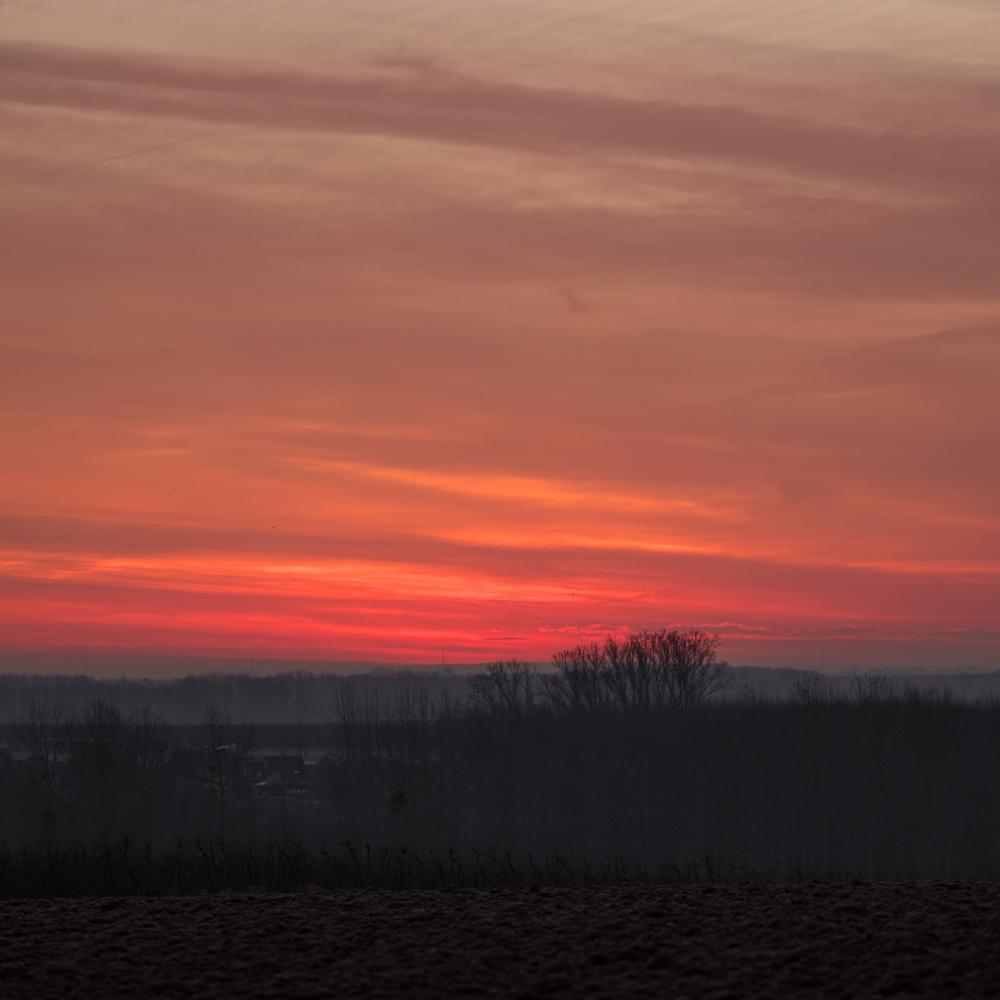 sunriser